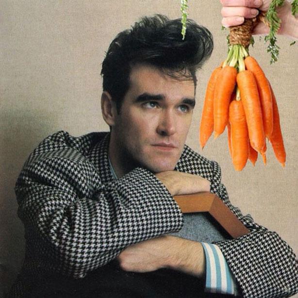 morrissey-carrots-614